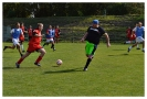 IPF Erpet Cup 2013_20