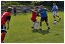 IPF Erpet Cup 2013_22