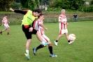 IPF Erpet Cup 2014_37