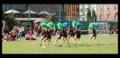 IPF - Erpet Cup 2012_22